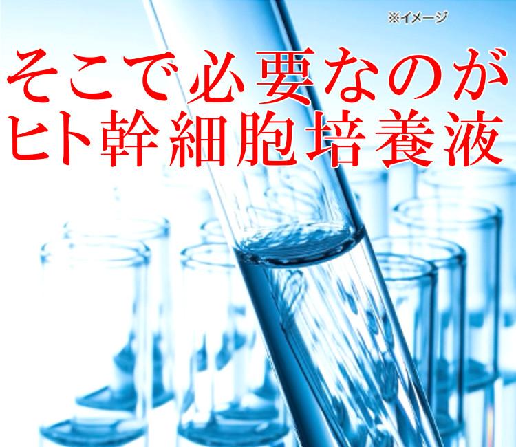 美肌・潤い肌に必要なのはヒト幹細胞培養液エキス