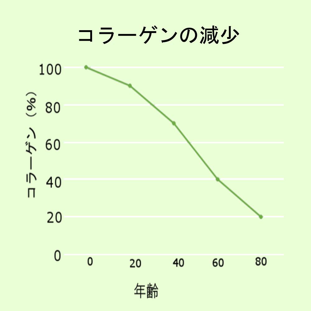 コラーゲンが歳を重ねることに減少