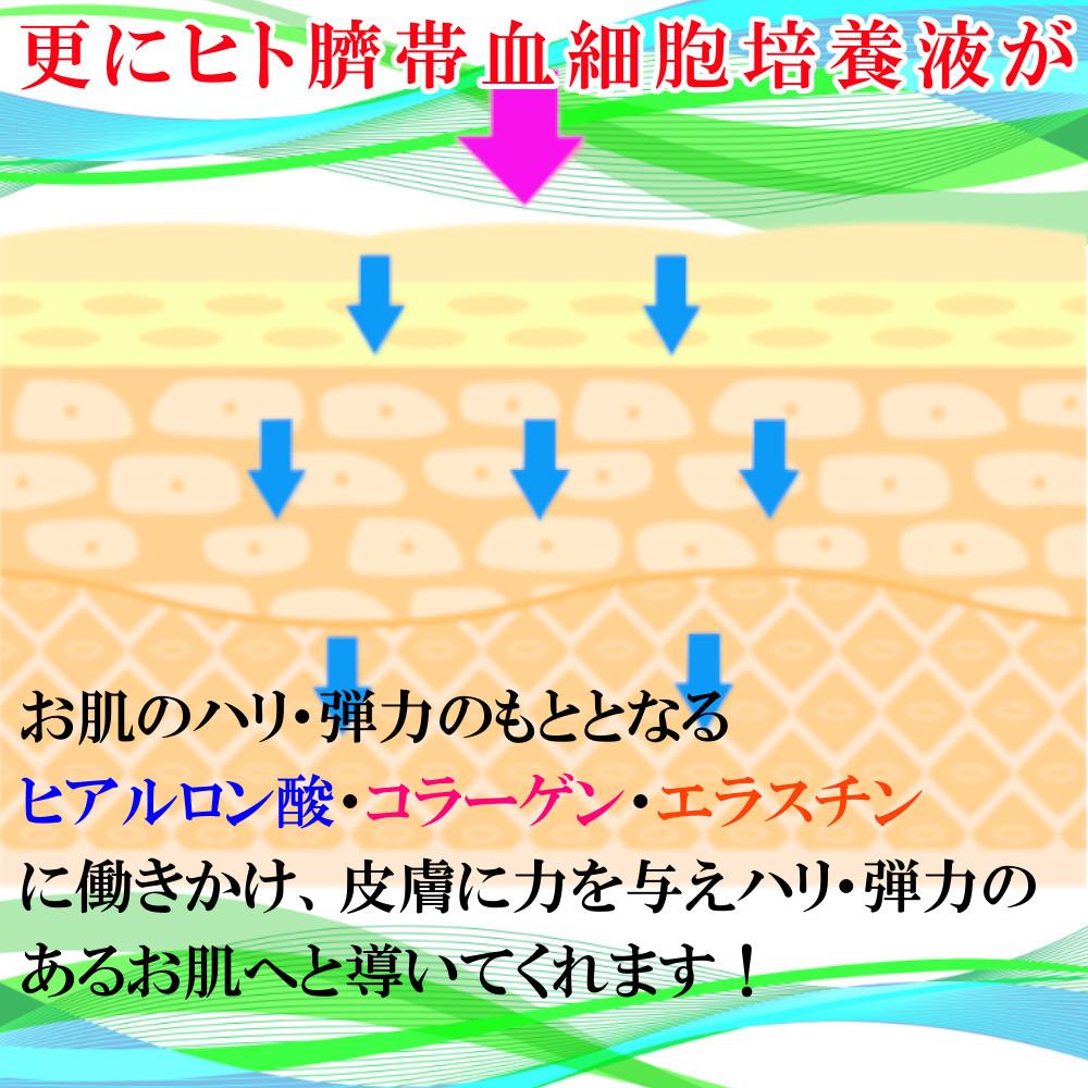 ランプロンは、ヒト臍帯血幹細胞培養液をナノサイズにして配合